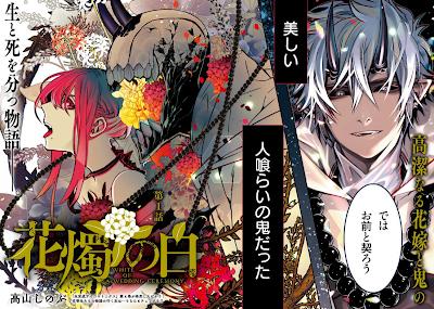 Shinobu Takayama lança mais uma série na Zero Sum
