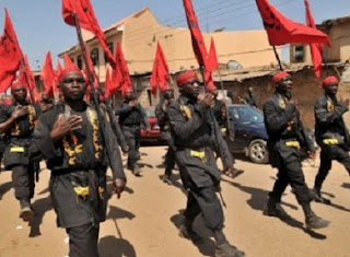 Islamic Movement in Nigeria (IMN)