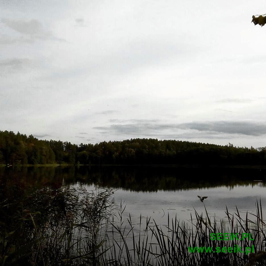 Landscapes from Masuria in Poland