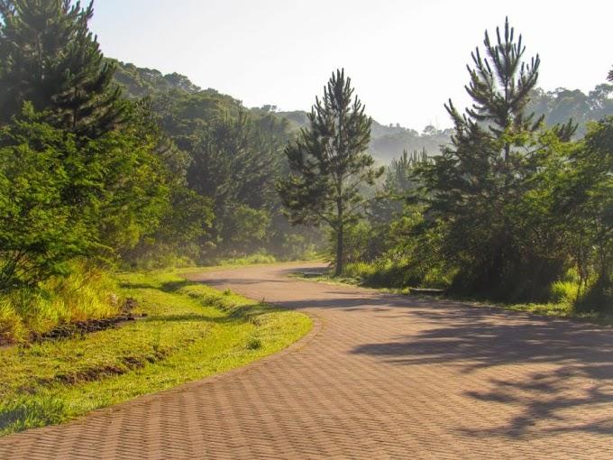 Parque Jequitibá em Cotia tem programação especial em novembro - Cotia e Cia