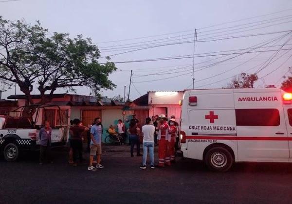 Perro Pitbull ataca y mata a mujer en silla de ruedas en Veracruz; piden salvar al perrito