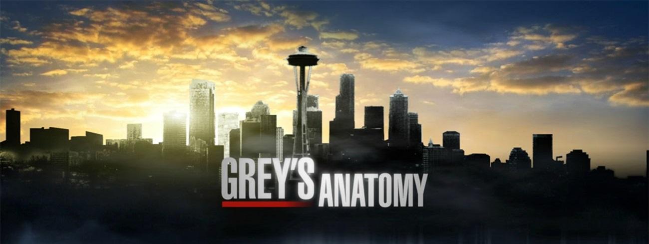 Anatomía De Grey Online Latino