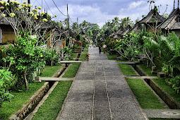 3 Fakta Unik Desa Trunyan Bali