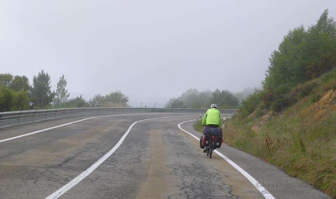 niebla-puerto