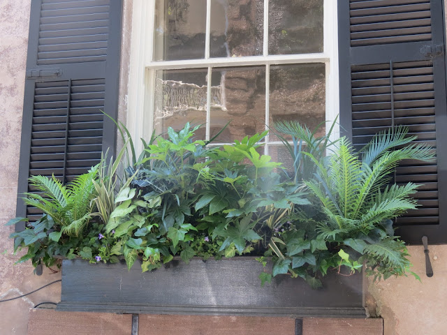 top hgtv garden ideas better homes and gardens shade loving plants flower box