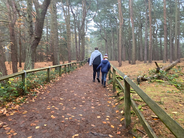 Visiting Formby and The Red Squirrel Nature Reserve