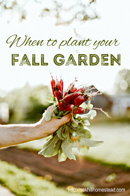 10 bloggers write about fall gardens: how, when and what to plant!