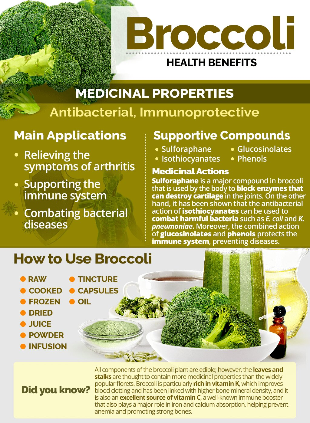 13 Advantages and Benefits of Using Broccoli in your Diet