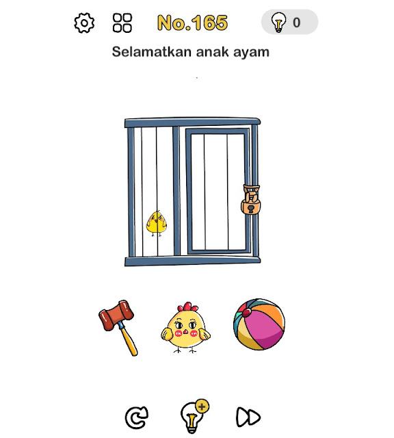 Selamatkan anak ayam