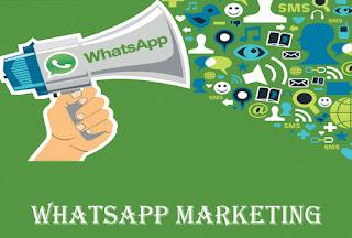 Tool WhatsApp Marketing
