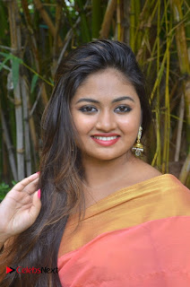 Shaalin Zoya Pictures in Pink Saree at Raja Manthiri Movie Press Meet ~ Celebs Next