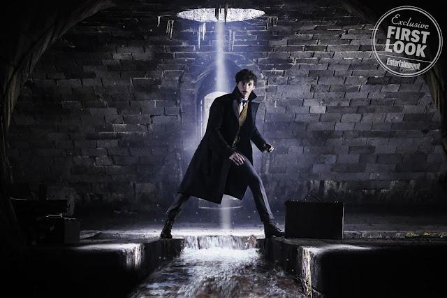 Newt e Dumbledore aparecem em novas fotos de 'Os Crimes de Grindelwald' | Ordem da Fênix Brasileira