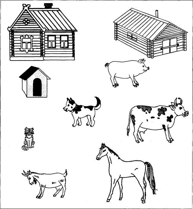 Задания картинки на тему домашние