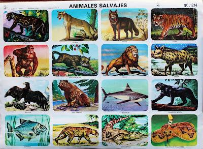Animales salvajes - Lámina escolar