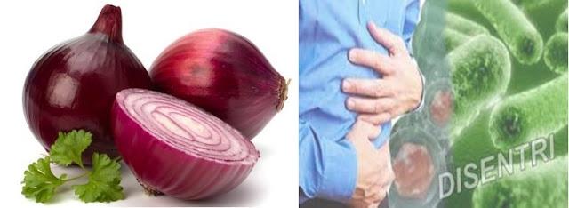 khasiat bawang merah untuk mengatasi disentri
