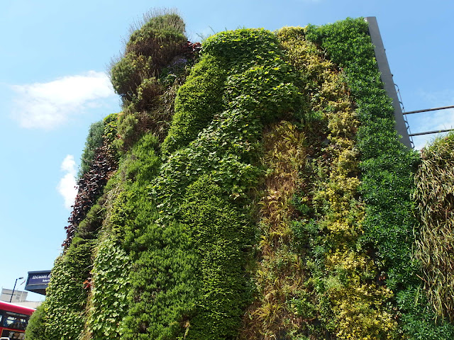 Part of the green wall at Edgware Road station (Bakerloo Line)