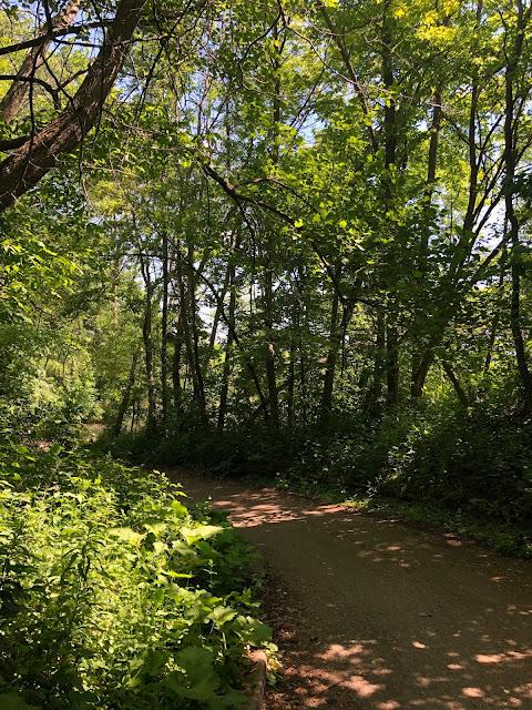 Natural trails parallel the lake shore at Sheridan Park in Cudahy, WI.