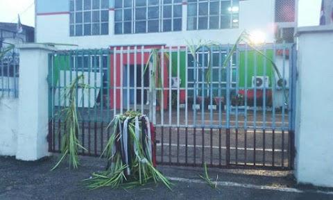 Ritualists seal off Ondo APC Secretariat [PHOTOS]