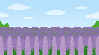 ラベンダー畑のイラスト(背景素材)