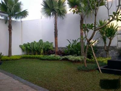 www.diktaman.com