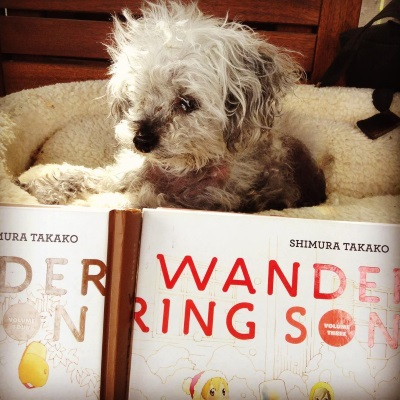 Murchie lies in his massive outdoor dog bed with two volumes of Wandering Son propped up in front of it. The bed is tall enough that his head pokes over the top of the books. Only the title of each book is visible, in brown on the left and in red on the right.