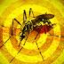 Bahia registra primeira morte com suspeita de febre amarela