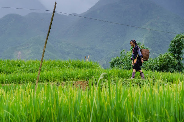 Top 5 things to do when traveling Sapa
