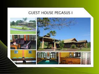 Guest House Pegasus 1