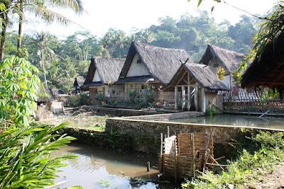 3 Unsur Kehidupan Desa dan Cirinya