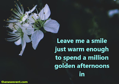 Good Afternoon Quotes for Friends Images