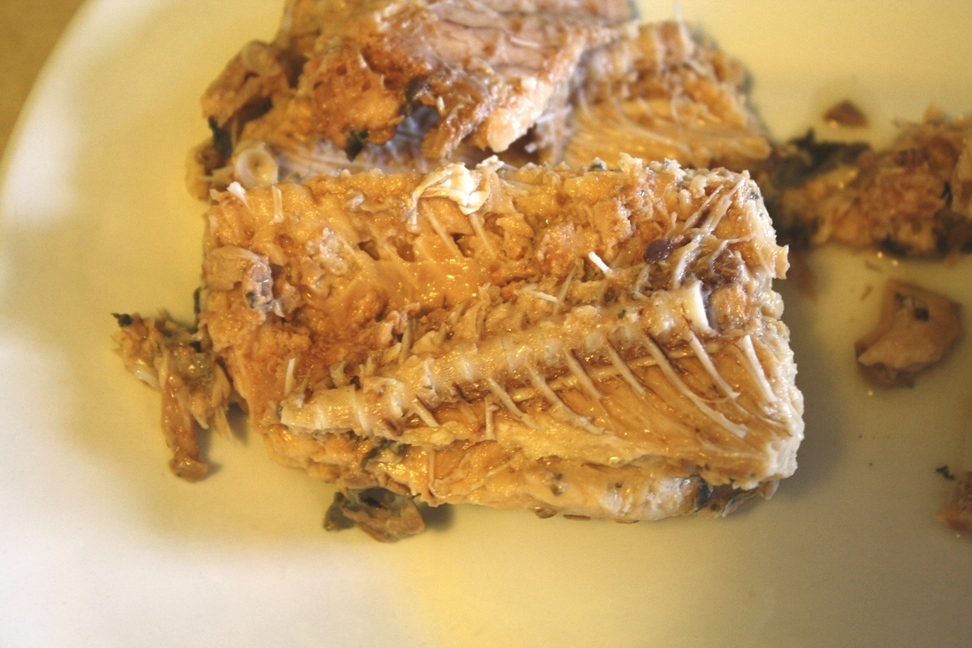Canned Salmon Bones