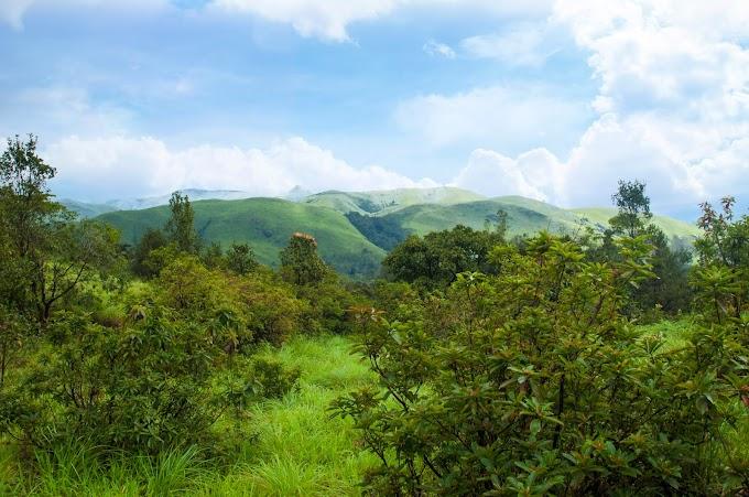 Kurinjal Gudda, Kadambi falls, Chennakeshvarar Temple and Mullodi Grasslands Trip