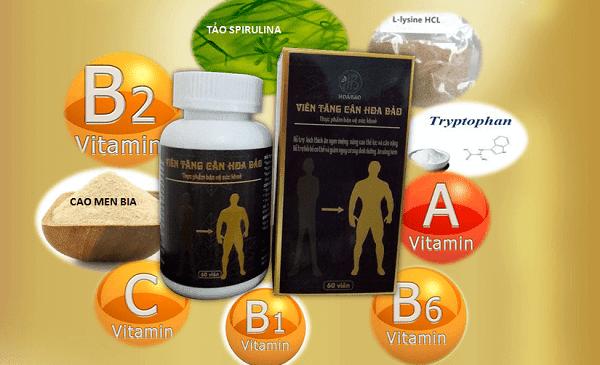 Thành phần và tác dụng của viên uống tăng cân Hoa Bảo