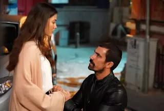 Doğduğun Ev Kaderindir - My Home My Destiny Episode 17 Summary and Release Date.