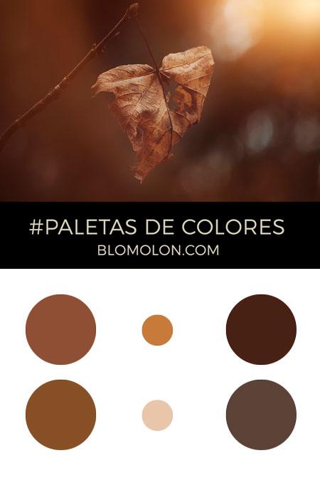 paletas_de_colores_del_mes_de_mayo_5