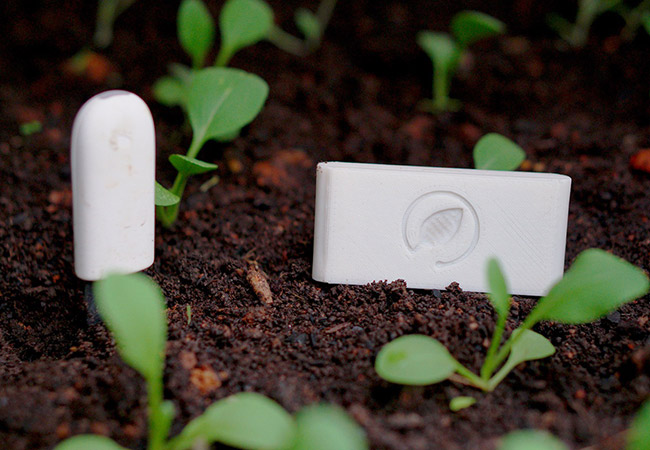 Tinuku Tanibox launches smart urban gardening and its supporting app
