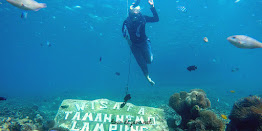 under water wisata pahawang