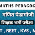 CTET EXAM 2020 Maths Pedagogy MCQ - गणित पेडगोजी