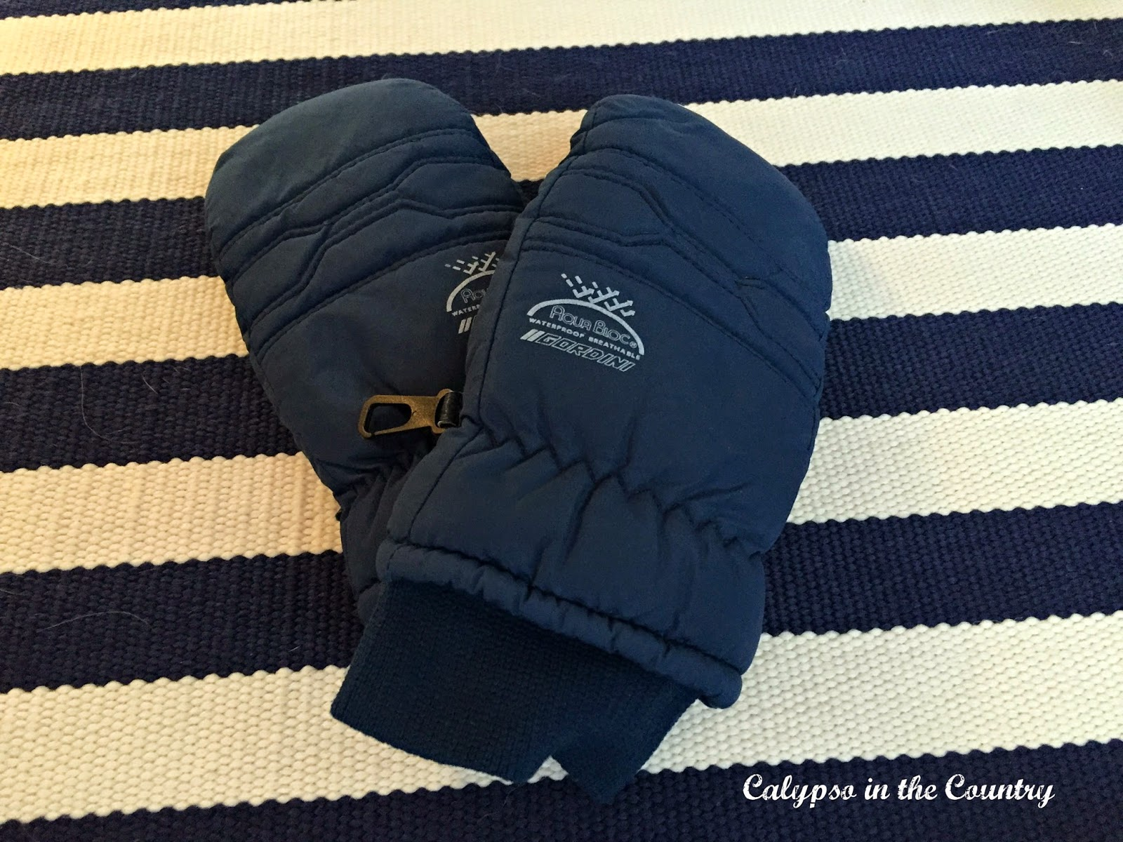 Ski Mittens - one of my essentials to stay warm