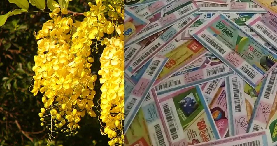 Kerala Lottery Vishu Bumper