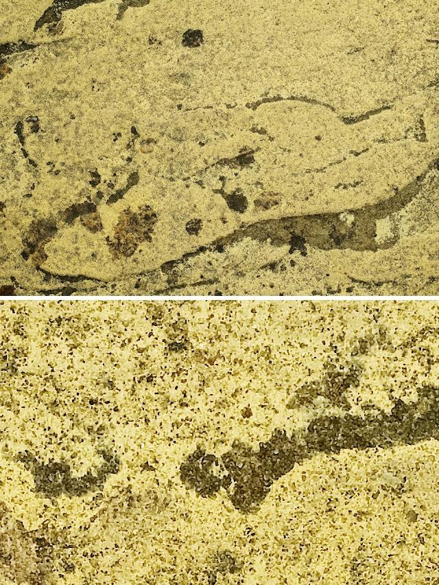 Stone texture yellow