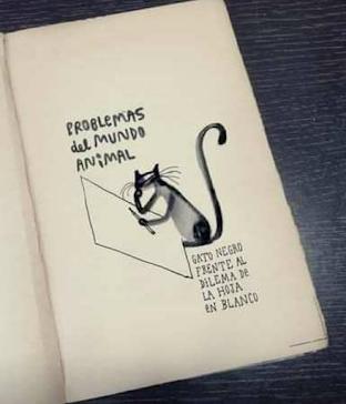 Argentine artist - Mr Ed - Artwork cat