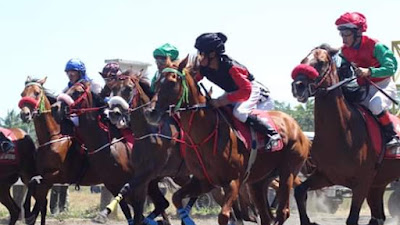"Kuda Sumbar Kamang Chrome Bersaing Raih ""Star of Star"" Ditengah Dominasi Kuda Pulau Jawa"