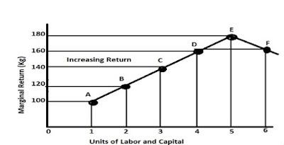 Law of Increasing Return Schedule & Diagram: