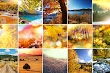 Top 5 Free Photo Collage Templates