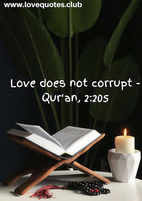 love quotes in quran