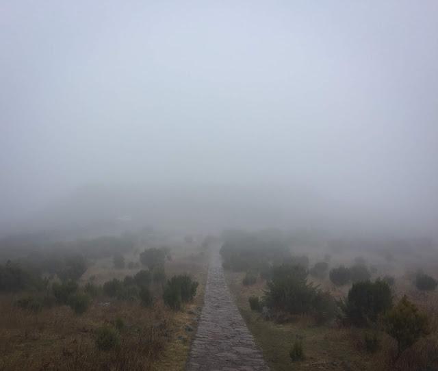 Spre Pico Ruivo, Madeira