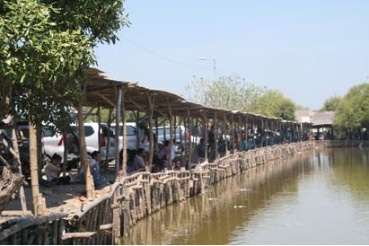 Desa Kalanganyar  sebagai Kawasan Minapolitan