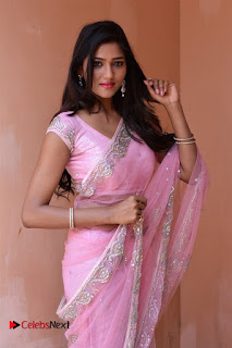 Telugu Actress Shalu Chourasiya Stills in Cute Pink Saree at Pochampally IKAT Art Mela  0001.jpg