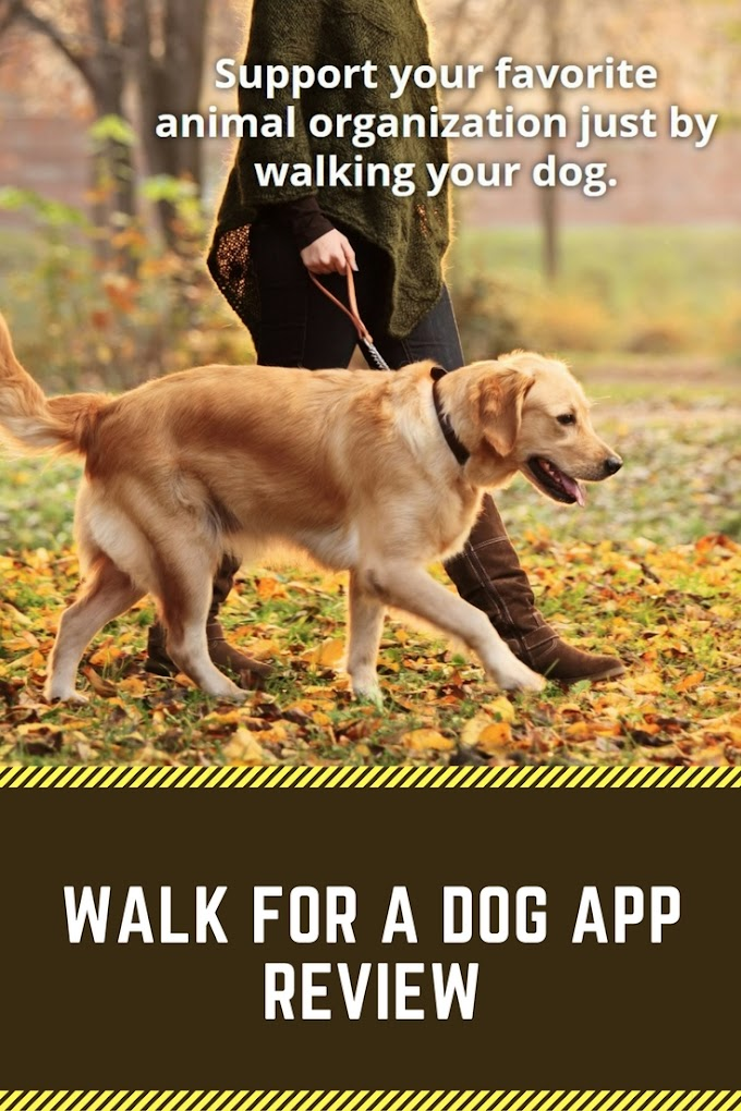 Walk For a Dog App Review